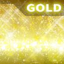ゴールドサポーター / Gold supporter