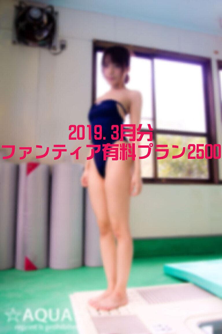【2019.3月】有料プラン2500:saeko