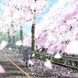 追憶 満開の桜坂 Senaのファンティア Sena の投稿 ファンティア Fantia