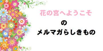 【花の宮へようこそ】メルマガらしきもの 第1号