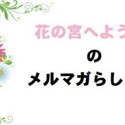 桜の花びら イラスト Matamukon