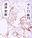 11月23日更新(中トロ)