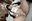 6/2夕方の投稿 fantiaでトップクラスにいま勢いのあるリアル淫らな仮面レイヤーちゃん ⭐️500到達で有料記事を無料開放