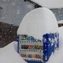 平成30年福井豪雪