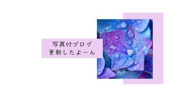 【タコパプラン以上限定】ブログ更新したよ♪