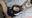 【97作目】巨乳のラブドールに中出しする動画