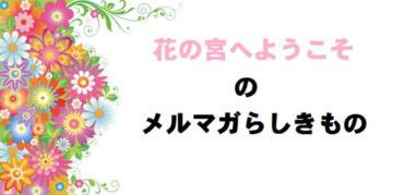 【花の宮へようこそ】メルマガらしきもの 第3号