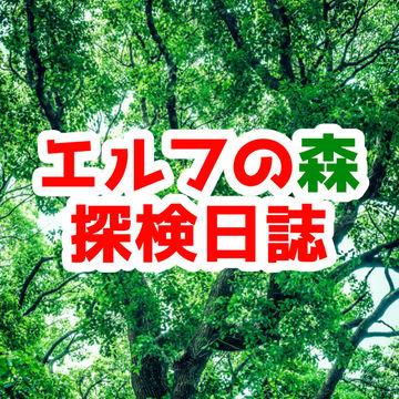 探検進捗ラフ&活動報告