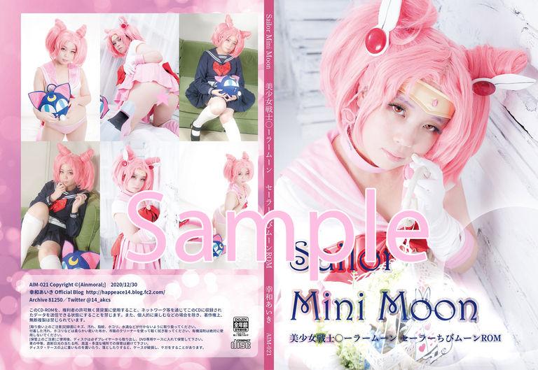美少女戦士○ーラームーン・セーラーちびムーンROM「Sailor Mini Moon」