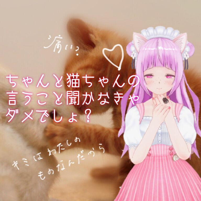 【ASMR】痛みを与えるのが好きな猫系彼女