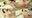 【くすぐり】人気AV女優 一条みおチャンの大の字拘束くすぐり拷問プレイ!(販売代行作品)