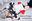 レイヤー彼女と素人カップルハメ撮り カノジョドリ! FG〇 ジャン〇・ダルク・オルタ・サンタリリィ編 サンプル動画