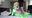 【無料サンプル動画】SexFriend 147「SAO - すごい あそこの おまんこ - リ●ファ 編」