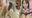 【個撮】超可愛い発育途中ソフト部ちゃん!勝手にお仕置き中出し決定!大量精子ドクドク垂れ流し映像(1)