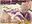 八雲紫 リマスター版