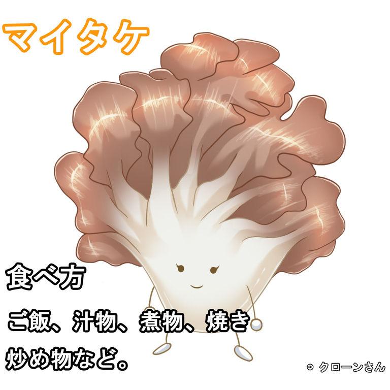 マイタケちゃん