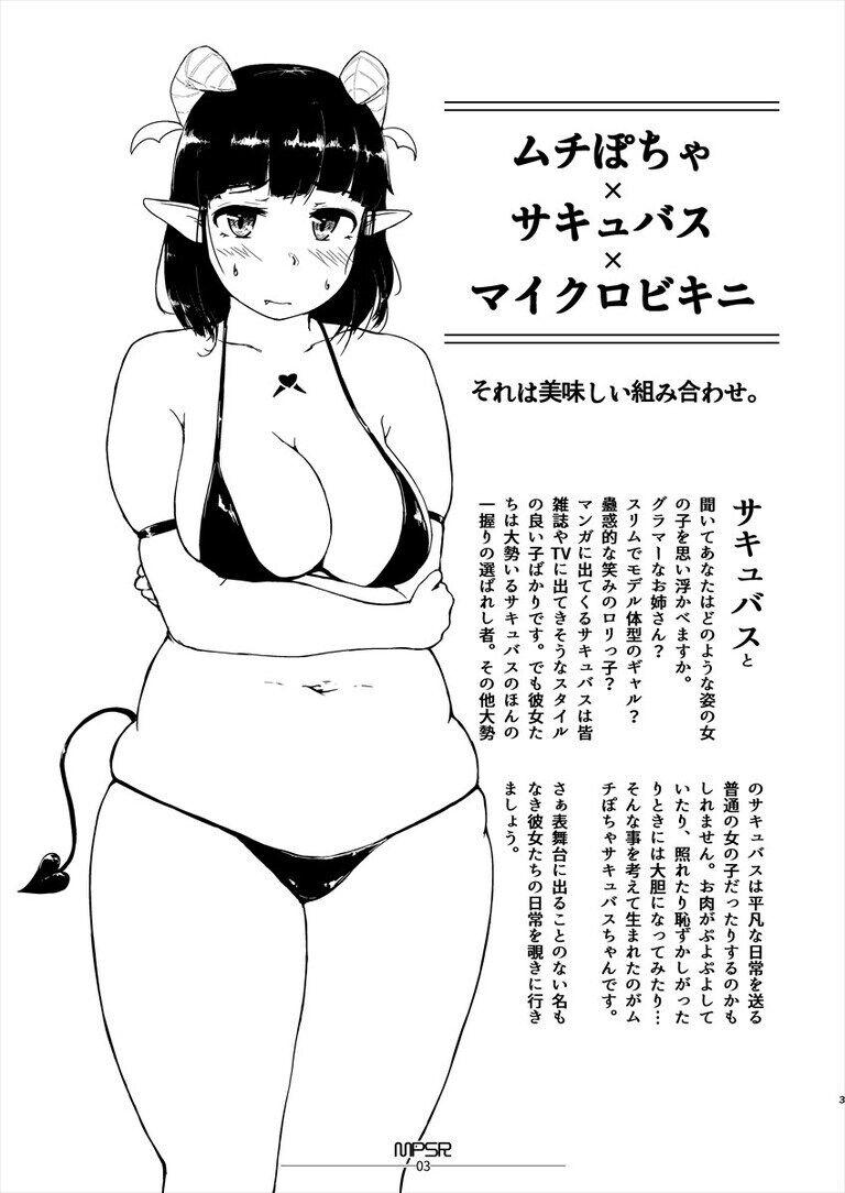 (DL版)MPSR ムチぽちゃサキュバスちゃんのラクガキ本
