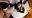 ●サンプル動画●【現役グラドル】流出ハメ撮り●10秒グラビアアイドル プライベート逆バニーコスプレ撮影会でハメ撮りされる 痴女