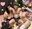 ★0円動画★【乱交5P・個撮】SEX狂いの男女5人集まりハメまくる乱交パーティ キマりすぎて頭ぶっ飛び、潮吹きまくる中出しSEXの一部始終【素人・Hオイル・アルコール】