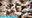 No.497ガチ洗脳ちゃん 歴代No.1長舌タレント級美貌の極上SS級プロコスプレイヤー 日向⊿かとし似 新太陽系最強ののかもも ノノ#04 ベロライブ Verotuber兎◯ぺこら[H]【7月新作】7/10公開