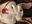 コスティック+手コキ搾精シリーズ B○ちゃんのマスターのおち○ぽ搾り取っちゃうぞっ!