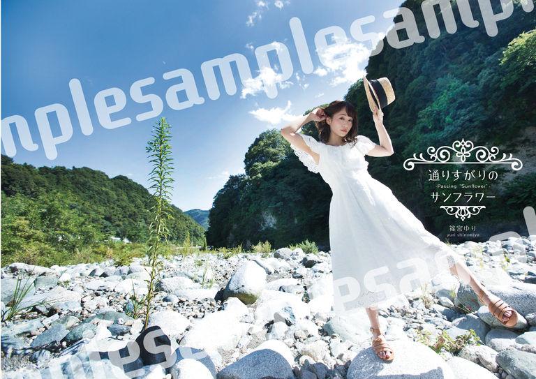 篠宮ゆり連作写真集第2弾 「通りすがりのサンフラワー」(写真集のみ)