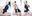 【DL】セイバー/ガールズオーダー  ダウンロード版  4K