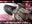 ガチピーチちゃん 透明度100%身長140㎝台ミニマム清純ど淫乱アイドルAV女優レイヤー 極上フェラテク性処理便女ドM調教記録 幻の秘蔵作品 蔵出し④ ドルオタと繋がる裏バイト[H]