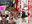 【特別価格映像】ガチ大輪姦Gカップ18歳レイヤー美少女崩壊アヘ顔タンツボ&中出し連続11発ザーメン絶叫痙攣SEX107分