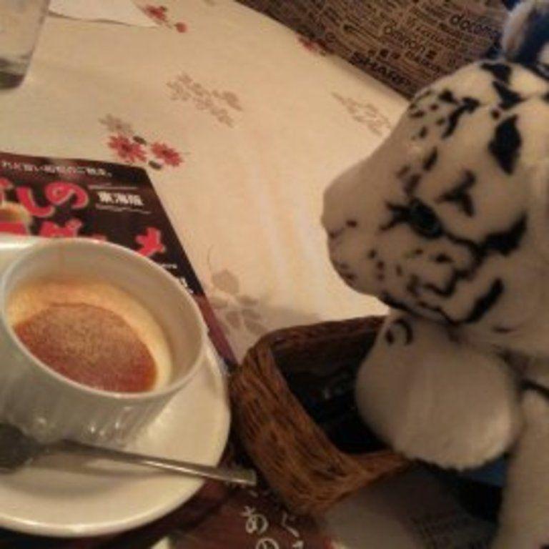写真集 ホワイトタイガーの赤ちゃん (お食事)