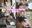 【見放題プラン】Sex Friend 45「ハメールレーン Vol.02 - あ◯ご - 」