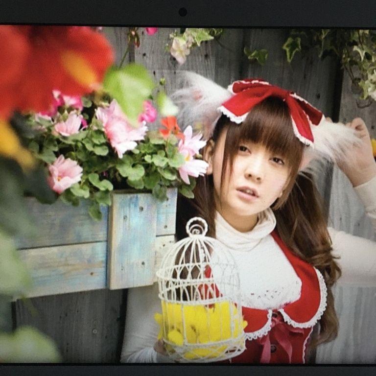 ロリ童話 スペシャルセレクトDVD