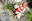 018 【極楽へ行かせてあげるわ!】 美神令子 SEIコスプレ写真集