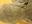 【10月限定公開】鼻チューブの一体型ゾウさん