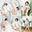 八尋麻衣さんデジタル写真集