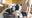 自らいおねだり生ナカ志願女装男子 高●レースクィーンコス地方出張撮影