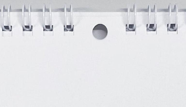 【プラチナ/ゴールドプラン限定】2021年カレンダー/13枚つづり