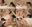 【個撮】白目剥いて失神しちゃう超ド淫乱の綾音ちゃんと超大好き錯乱娘の聡美ちゃんの異様なエロエロおまけ映像